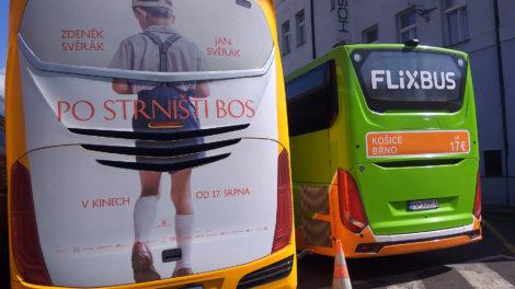 Autobusy RegioJet a Flixbus, foto: Zdopravy.cz/Jan Sůra