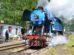 Jednou z největších akcí ČD Nostalgie je setkání parních lokomotiv v Lužné u Rakovníka. Na snímku lokomotiva 477.043 přezdívaná Papoušek. Foto: Jan Sůra
