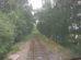 Pohled ze stanoviště strojvedoucího na zarostlou peážní trať přes Polsko mezi Hrádkem nad Nisou a Žitavou: Foto: Jan Sůra