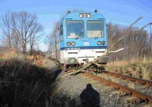 Srážka spěšného vlaku s padlými stromy 4. února 2014 u Jindřichova ve Slezsku. Autor: Drážní inspekce