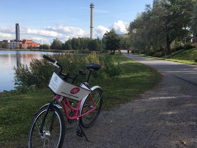 Rekola ve městě Vaasa. Foto: Vít Ježek