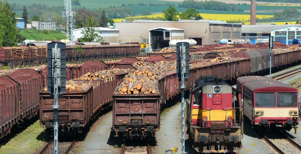 Vagóny s kulatinou v Krnově. Foto: Michala Grünbaum / ČD Cargo