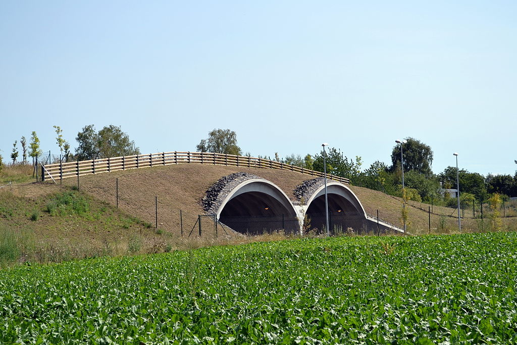 Ekodukt na Vysočanské radiále. Autor: Sefjo – Vlastní dílo, CC BY-SA 3.0, https://commons.wikimedia.org/w/index.php?curid=20768835