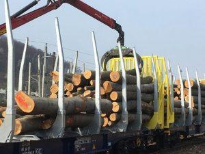 Nakládka dřeva do vozu Smart GigaWood. Foto: Innofreight