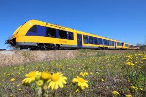 Motorový vůz Alstom Lint v barvách Oberpfalzbahn. Foto: Oberpfalzbahn