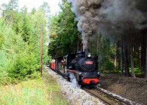 Lokomotiva U46.101 (polka) při zkoušce. Autor: Jan Píšala/JHMD