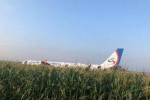 Airbus A321 společnosti Ural Airlines po přistání v kukuřičném poli. Foto: Twitter