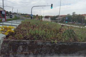 Zelená střecha zastávky na Hradčanské. Pramen: JCDecaux