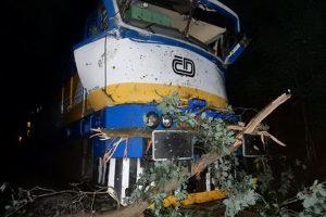 Náraz osobního vlaku mezi Holýšovem a Staňkovem do stromů. Foto: Drážní inspekce