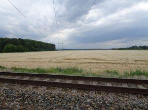 Vlárská dráha, pohled do rovinatého území v blízkosti rybníku Stolařka. Pramen: dokumentace EIA/Hykel (Ecological Consulting a.s.)