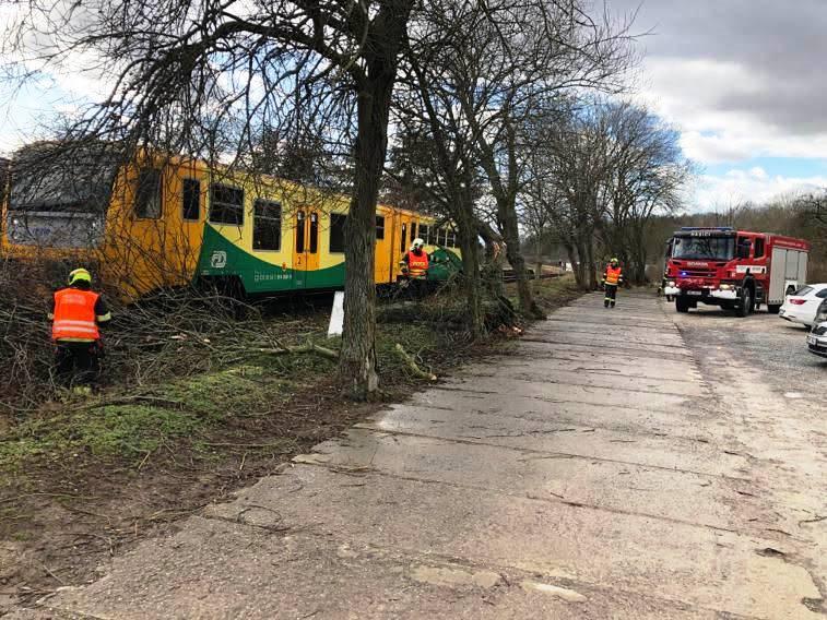 Popadané stromy na železnici. Foto: Správa železnic
