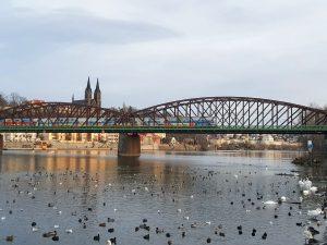 Železniční most pod Vyšehradem. Foto: Jan Sůra