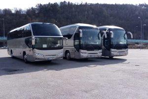 Autobusy společnosti United Buses. Foto: United Buses