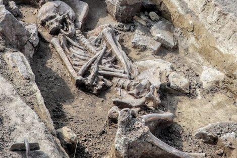 Hrob člověka ze starší doby bronzové (cca 1 800 let před naším letopočtem) v místech, kde povedou koleje v nové stopě. Pramen: Správa železnic