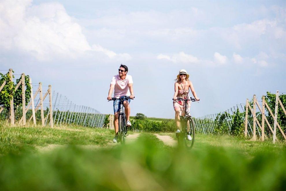 Cykloturistika na vinařských stezkách. Foto: CzechTourism