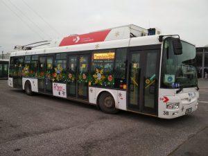 Vánoční trolejbus v Hradci Králové. Foto: DPMHK