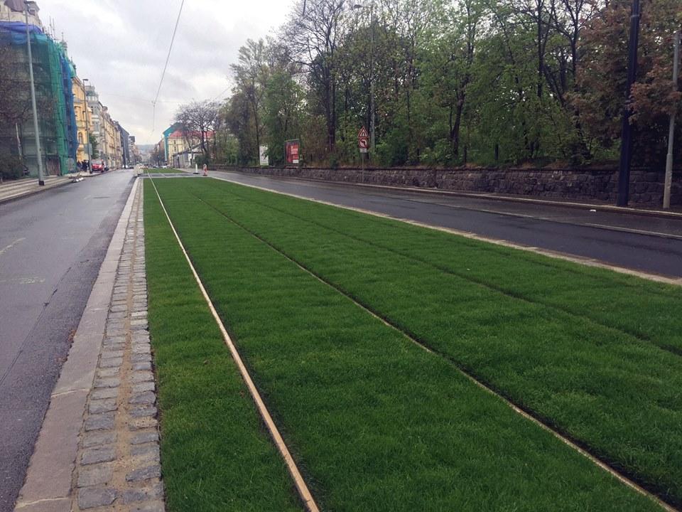 Zelený tramvajový pás v Praze 8. Foto: Zeleni.cz