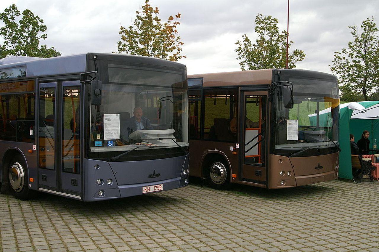 Autobusy MAZ. Foto: Redline - Wikimedia Commons