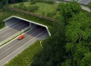 Vizualizace ekoduktu u Moravského Písku. Foto: ŘSD