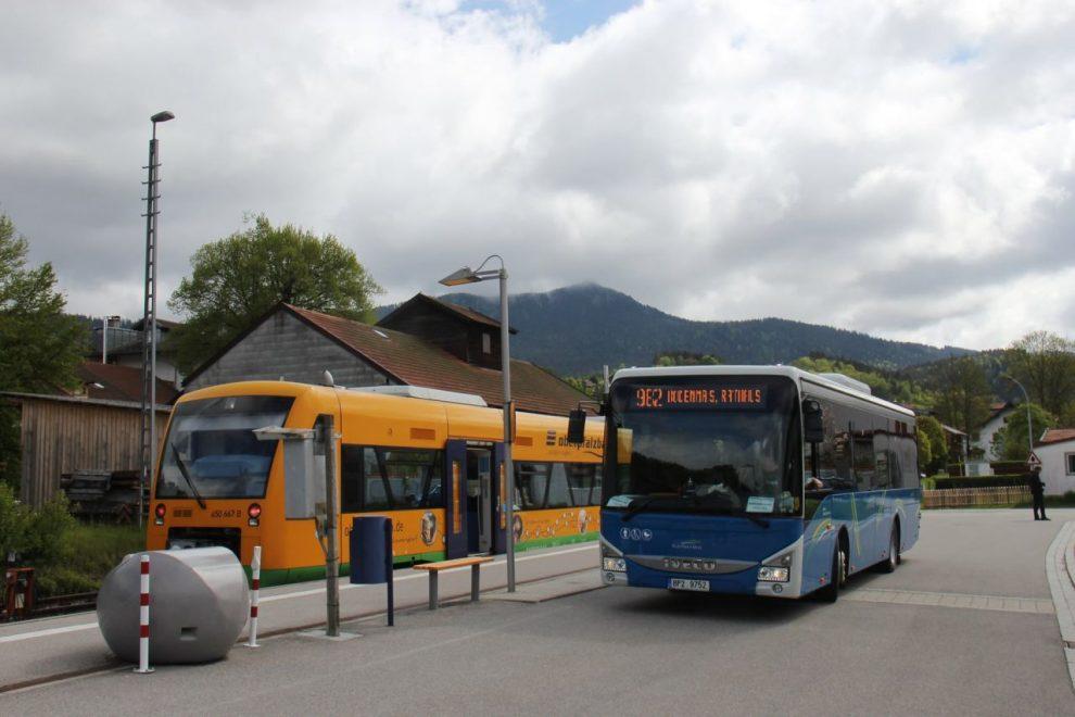 Autobus linky 982 v Lamu. Foto: IDPK