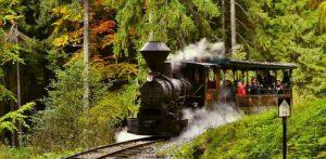 Provoz na historické lesní úvraťové železnici. Foto: Kysucké muzeum