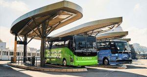 Autobusy společností FlixBus a Greyhound. Foto: FlixMobility