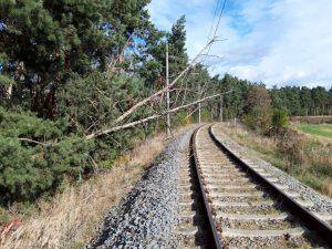Popadané stromy na železničním zkušebním okruhu. Foto: VUZ